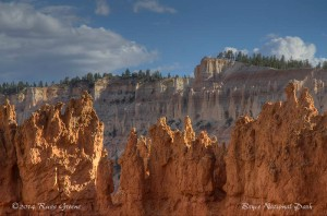 It's hard to take a bad picture in Bryce, but it's harder to take a good one!