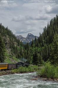 Traveling along the Animas River on the Durango & Silverton RR