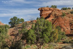 Capitol Reef has a richly varied landscape