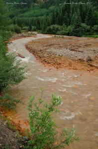 Red Mountain Creek, Ironton Park, CO. I guess that's iron staining the rocks.