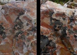Dry Rock/Wet Rock