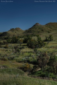 Scenery along the Lewis Creek trail, Theodore Roosevelt National Park, ND