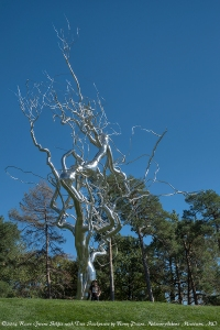 Stainless Steel Tree Sculpture by Roxy Paine