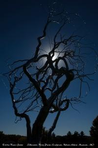Tree sculpture silhouette