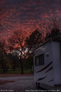 Sparrowfoot sunset