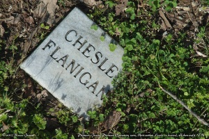 Chesle Flanigan's Grave