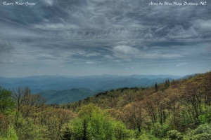 Blue Ridge Parkway View