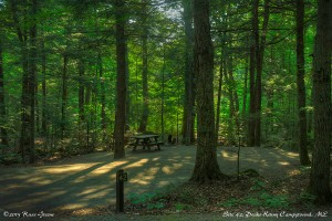 Site 42: Peaks-Kenny State Park Campground
