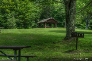 Picnic Area, Hapgood Pond