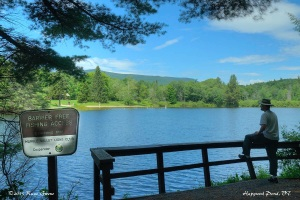 Hapgood Pond Fishing Fence