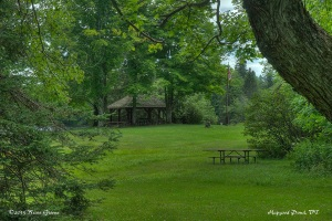 Picnic Area with Shelter: Hapgood Pond, VT