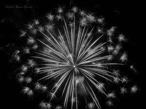 In black and white this shot of fireworks kinda looks like a dandelion, doesn't it?