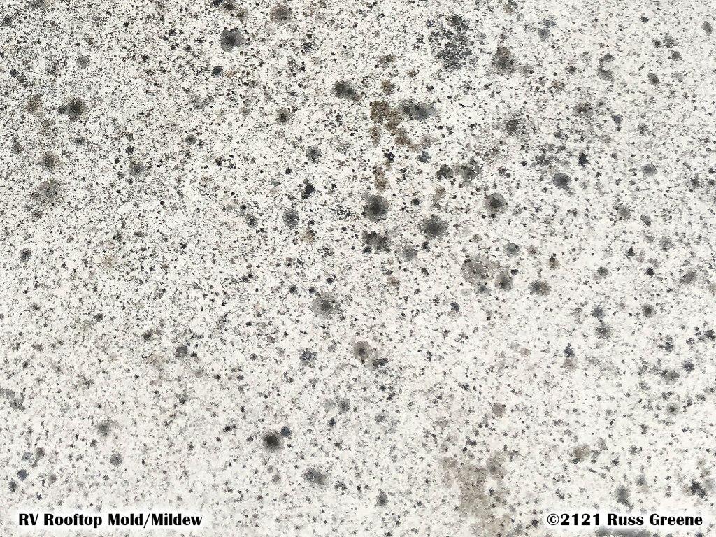 Mold, mildew on RV Roof